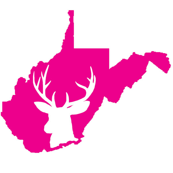 West Virginia Buck Decal Pink
